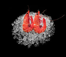 PC1315TX5 - Whole Cooked Tiger Prawns 13