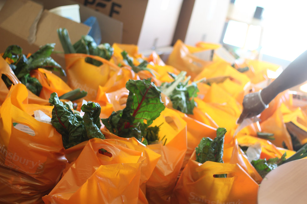 shopping bags filled with produce for vulnerable people