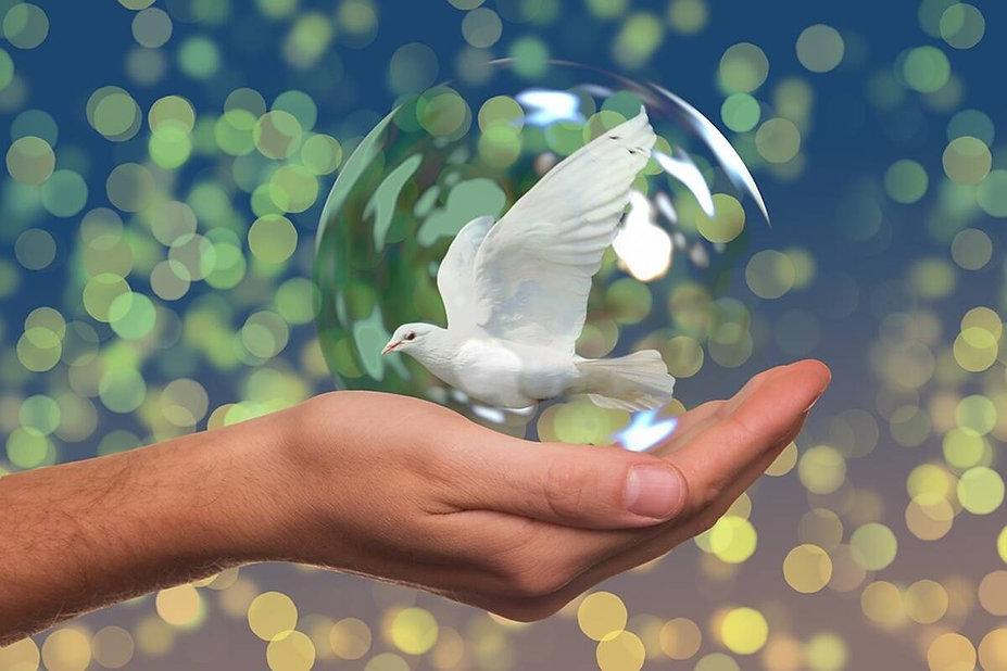 barış1.jpg