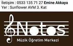 notos2.JPG