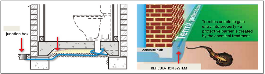RETICULATION.png