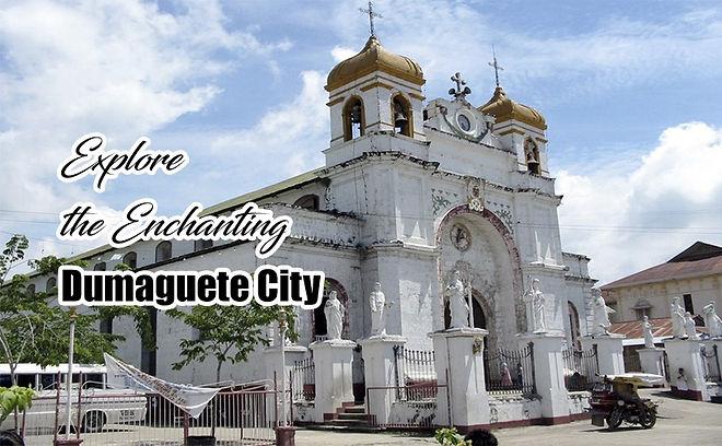 pest-control-Dumaguete-City.jpg