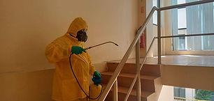 disinfection-static-spray.jpeg