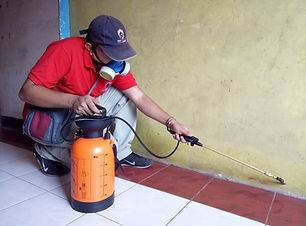 General-pest-control-service.jpg