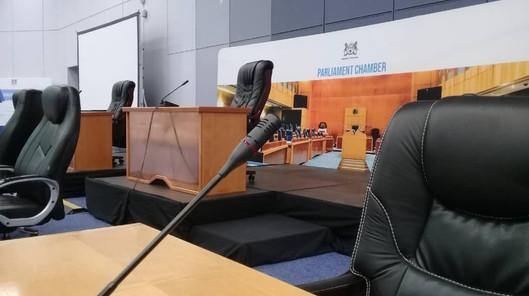 parliament 2020 3.jpg