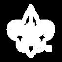 Fleur de lis_White_Transparent.png
