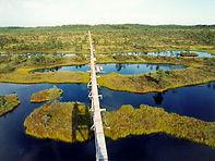 naturaleza estonia