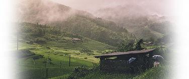 dVietnam.jpg