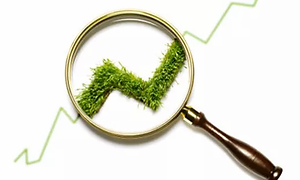 lupa-sustentabilidad-verde.webp