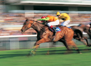 A Horse Racing Scandal: Lessons Learned