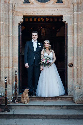 Bazil the Abbey cat - professional 'photo bomber'