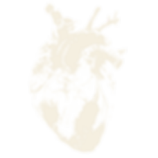 Album_Sin_Transp__0002_Corazón-grande-BU