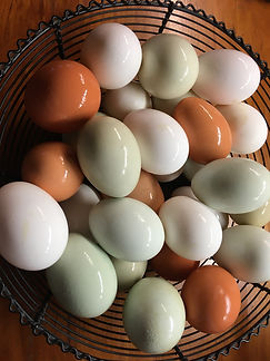 Eggs in Basket PRODUCTS Meat Subpage Low
