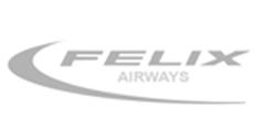 Felix Airways