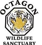 Octagon Tiger Logo-001.jpg