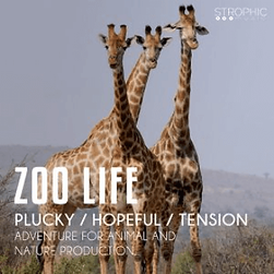Zoo Life offi.png