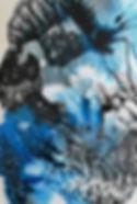 Algues bleues_edited.jpg