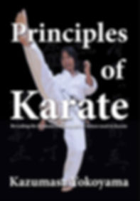 Principles of Karate