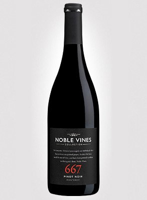 NOBLE VINES PINOT NOIR -  750ML