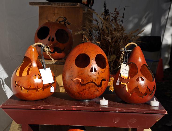 Gourd Pumpkins