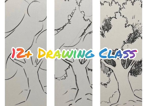 Kids 12+ Drawing Class- 1