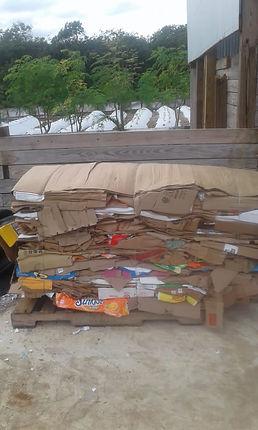 Fosters cardboard 2.JPG