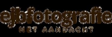 logo_ejbf_metaandacht 900x300px_edited.png