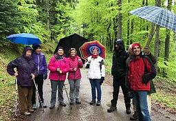 sophrologie nature randonnée groupe entrainement