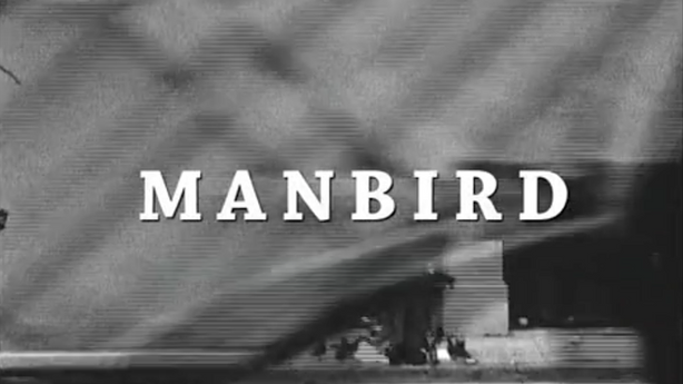 Manbird