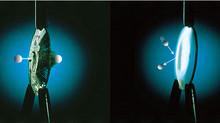 Impact Resistant Lenses