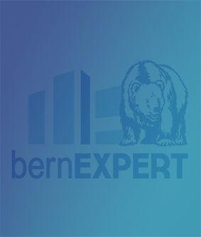 bern expert2.jpg