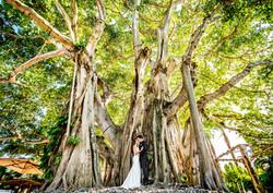 Amanda & Alex, Married 2014