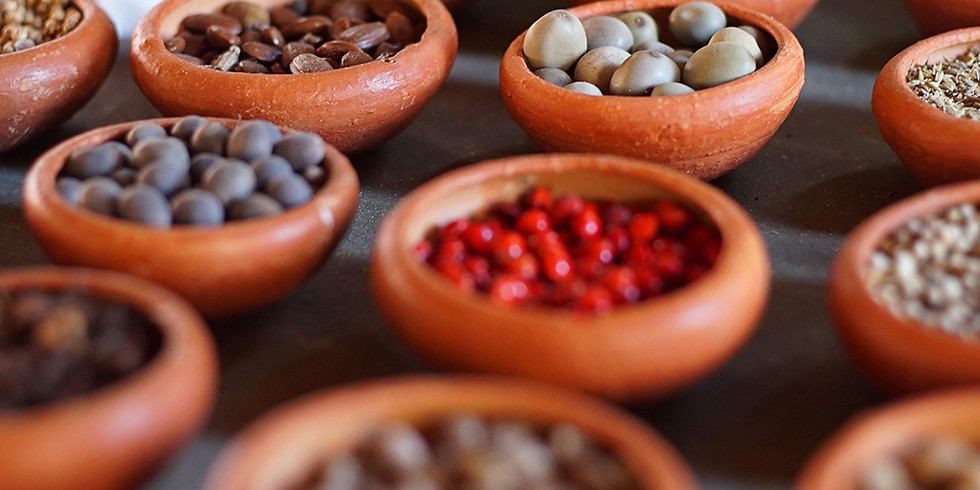 Formação em Nutrição e Dietética Ayurveda