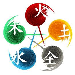KINESIOLOGIA.jpg