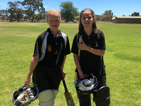 Junior Girls Cricket at PACC