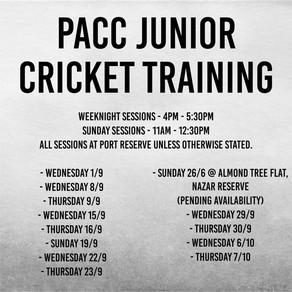 Junior Cricket Training