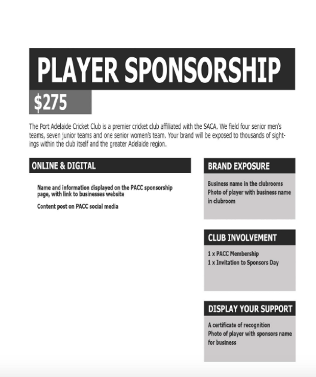 Player Sponsorship 20:21.png