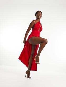 Twisted Rose Dress
