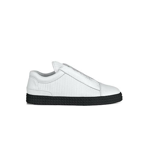 SSD-SISR Lowtop Signature Sneaker