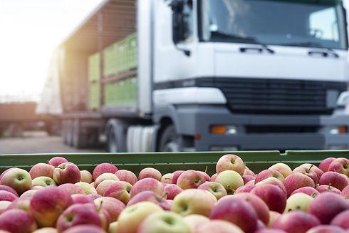 りんごとトラック