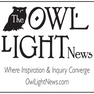 NEW Owl Light.png