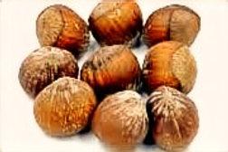 Filbers/Hazelnuts