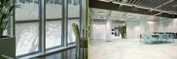 Window Manifestations & Flooring