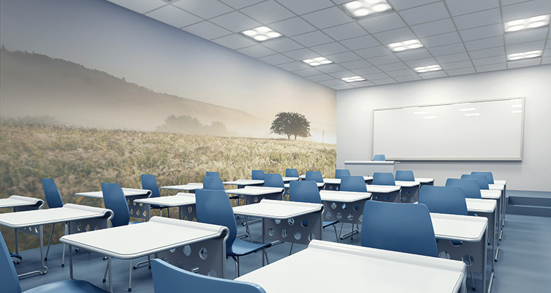 wall graphic education tuffcover acrovyn