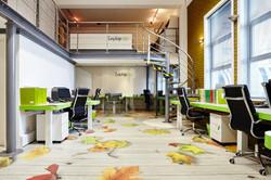 Displayways Studio