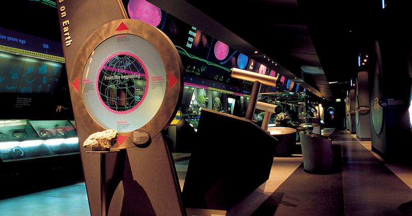 Museum display  graphics NHM.jpg