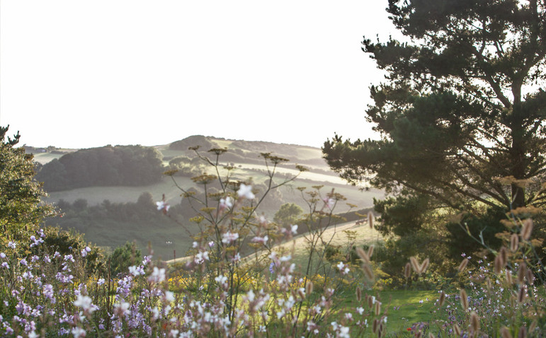 Views over the hills towards Salcombe