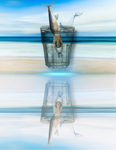se noyer dans un verre d'eau.JPEG