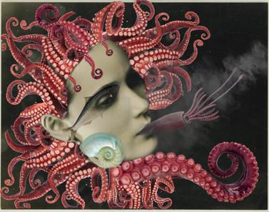 fumer le calamar.JPG