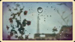 PicsArt_05-08-11.53.34